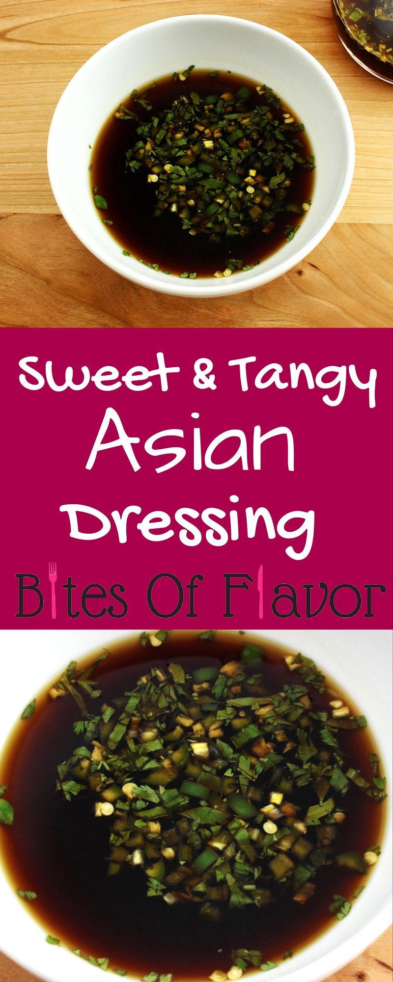 Sweet & Tangy Asian Dressing- Easy to make and great as a dressing or marinade. Fresh ingredients with no preservatives. Weight Watchers friendly recipe! www.bitesofflavor.com